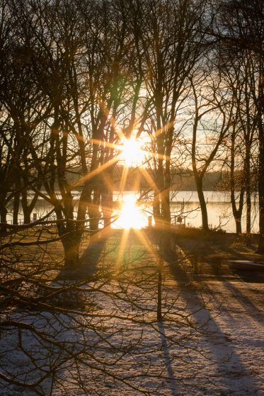 Morgens am Beetzsee im Winter. Wintersonne