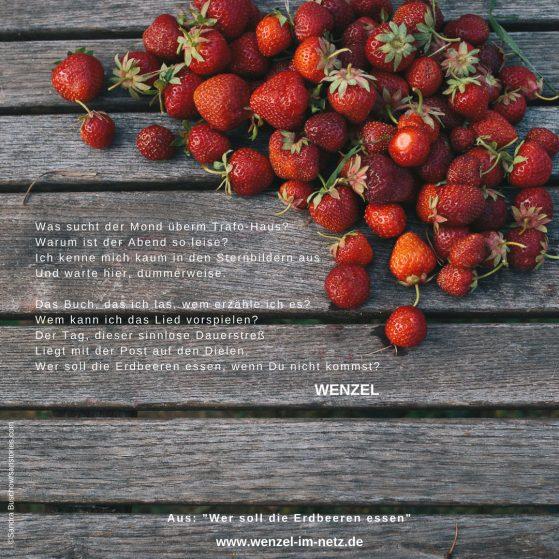 Wenzel_Wer soll die Erdbeeren essen