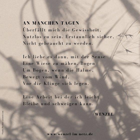 Das Gedicht An manchen Tagen von Wenzel